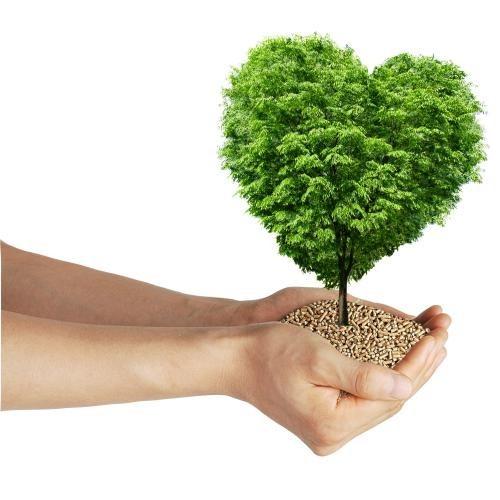 農業廢棄資材轉化燃料隊(乾淨的煤) -第三屆尤努斯獎:最具潛力計畫網路票選活動