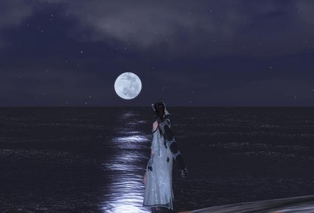 月空下的女俠-《天涯明月刀》天涯冬季攝影展
