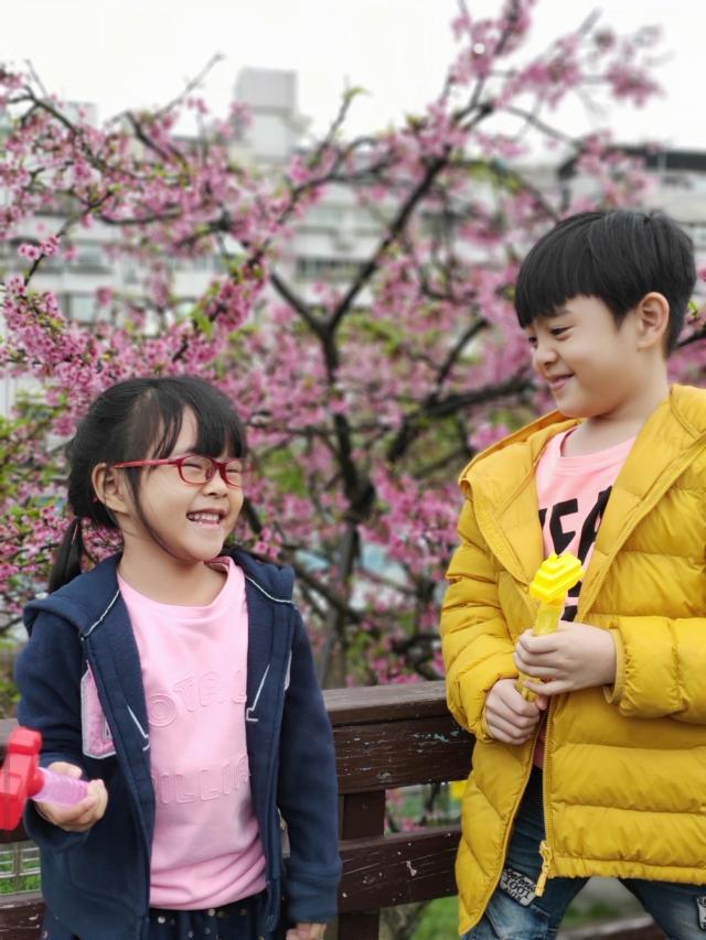 開心❤-2019樂活夜櫻季告白櫻花攝影大賽