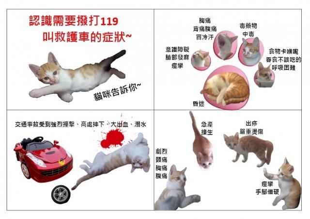 貓咪告訴你-緊急救護四格漫畫創意徵選活動
